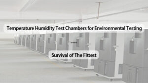 Temperature Humidity Test Chambers for Environmental Testing- Survival of The Fittest (1)